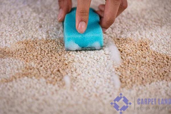 تمیز کردن فرش بدون شستن